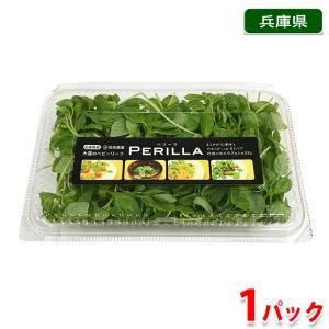 兵庫県産 ペリーラ 1パック(約35g)