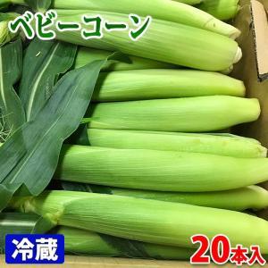 愛知県産 皮付き・ベビーコーン 20本入り(バラ詰め)|promart-jp
