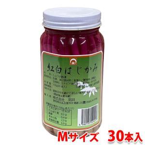はじかみ紅白(瓶) M 30本入り|promart-jp