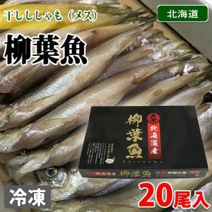 干しししゃも(柳葉魚)メス 20尾入り 化粧箱|promart-jp