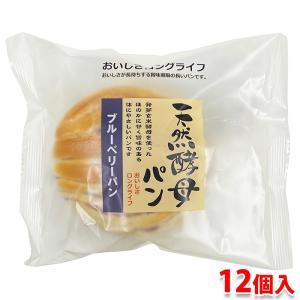 天然酵母パン (ブルーベリー) 12個入り (箱) promart-jp