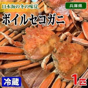 兵庫県産 ボイルセコガニ 1匹|promart-jp