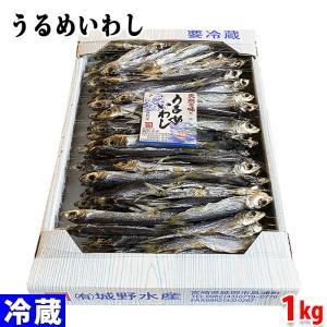 国産 うるめいわし 1kg|promart-jp
