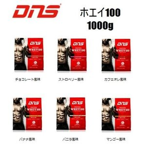 DNS プロテインホエイ100 【容量:1000g】 [プロテイン・サプリメント](ホエイプロテイン)|pronakaspo