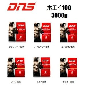 DNS プロテインホエイ100 【容量:3000g】3kg [プロテイン・サプリメント](ホエイプロテイン)|pronakaspo