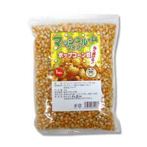 ハニー マッシュルームタイプポップコーン豆 1kg