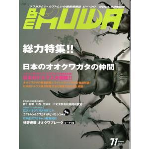BE-KUWA71号 proshop-kabuto