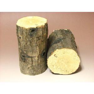コナラ産卵木(産卵材)中目バラ1本 proshop-kabuto