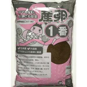 フォーテック社製 産卵1番5L|proshop-kabuto