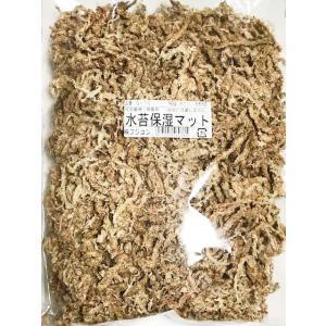フジコン製 水苔保湿マット10L|proshop-kabuto