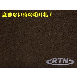 産まない時の切り札!RTN製Nマット5L