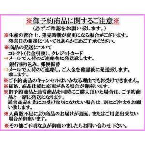 アムズデザイン アイマ シュナイダー18 【メ...の詳細画像2