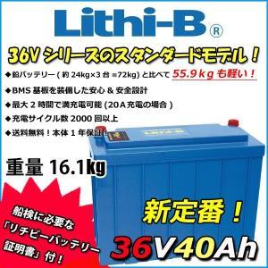 リチビー(Lithi-B)  36v バッテリー 40Ah (LifePO4 リチウムバッテリー) 【送料無料】|proshopks