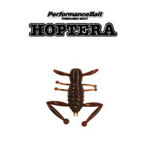スミス(SMITH) ホプテーラ(HOPTERA) メール便OK <表層虫パターンにおススメ!>|proshopks