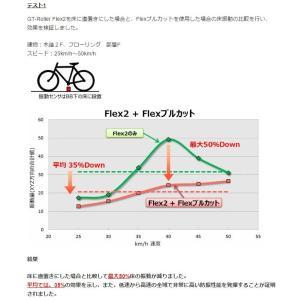 GROWTAC 2点セット GT-ROLLER Flex 3/Flexブルカット グロータック|proskiwebshop|03