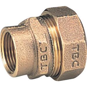 タブチ TBC PE継手メネジ1種20mm(20PGV-1)|protools
