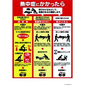 つくし工房 熱中症対策ポスター 熱中症にかかったら (CN13)|protools