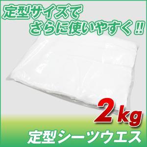 定型シーツウエス (洗濯済み リサイクル生地) 2kg/袋 布 メンテナンス 掃除 吸水|proues