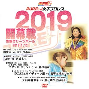 【DVD-R】PURE-J女子プロレス 勝愛実/有田ひめか/Leon/宮城もち/コマンド ボリショイ...