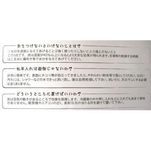 47 ゴールデン【とるまワンコ】(約) 高さ47CM|psp-ho1|04