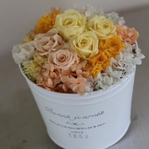 【通常便送料別】プリザーブドアレンジメント「レモンツリー 」|pualani-flowers