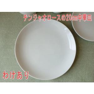 (訳あり)チンジャオロースの20cm中華皿/アウトレット ケーキ皿 絵付け教材 業務用食器 激安 美濃焼 日本製 転写\|puchiecho