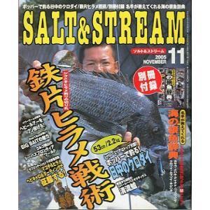SALT&STREAM(ソルト&ストリーム) 2005年11月号