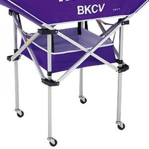 molten(モルテン) 平型軽量 ボールカゴ (BKCV用 小物収納ネット) PPLパープル CVRNP