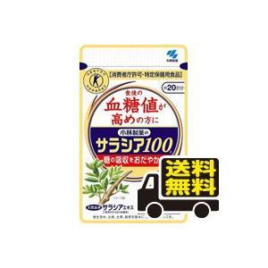 ☆メール便・送料無料☆小林製薬のサラシア100...の関連商品3