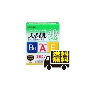 ☆メール便・送料無料☆ ライオン スマイル40...の関連商品3