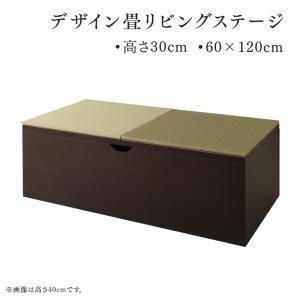 日本製 収納付きデザイン畳リビングステージ そよ風 そよかぜ 畳ボックス収納 60×120cm ロータイプ|purana25
