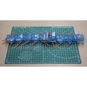 楽しい工作シリーズ(セット) No.230 ムカデロボット工作セット CENTIPEDE ROBOT|purasen