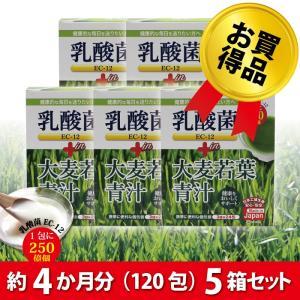 乳酸菌青汁 乳酸菌 青汁 まとめ買い 乳酸菌 EC-12 プラス 120包(24包入5箱) 国産 大麦若葉 抹茶風味 美容 ダイエット【送料無料】|pure-healing