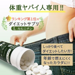ダイエット ダイエット サプリメント ダイエットサポート ダイエットサプリ L-カルニチン
