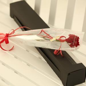 プリザーブドフラワー アイネ レッド 母の日 ギフト カーネーション 花束|purizasenka