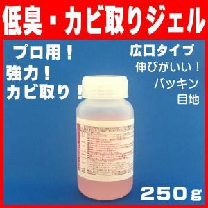 ゼリー状 強力 かび取り剤 臭いが少ない 黒カビ 除去 パッキン カビとり一発リキッド 250g|pvd1