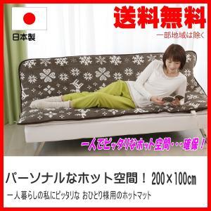 一人用ホットマット 200×100cm 日本製 あったかパーソナルマット|pvd1