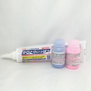 パッキン カビ取り剤 浴室 ガラス 磨き剤 3種セット カビとり一発 500g+浴室内磨き剤100g+ガラス磨き剤100g|pvd1
