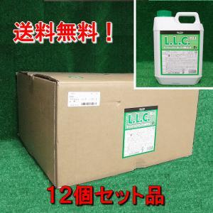 LLCクーラント不凍液 ロングライフクーラント2Lx12本緑 濃度95% ホンダ等 P-790 お得品|pvd1