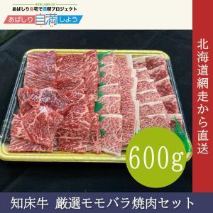 知床牛 厳選モモバラ焼肉セット 600g pyloninc