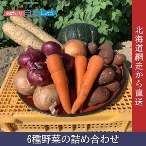6種野菜の詰め合わせ pyloninc