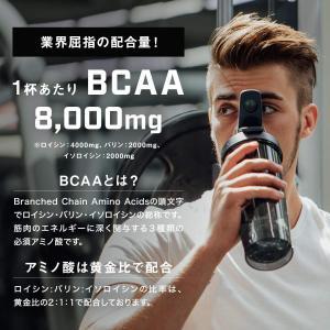 TARZA(ターザ) BCAA 8000mg アミノ酸 クエン酸 パウダー マンゴー風味 国産 1kg|qalib
