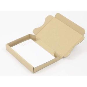 アースダンボール 定形外郵便/ハガキサイズ小型ダンボール箱(茶)10枚セット 0434 qalib