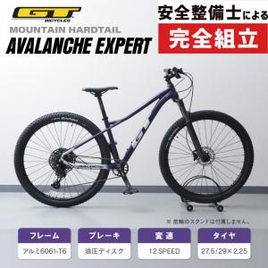 GT ジーティー 2019年モデル AVALANCHE EXPERT アバランチェエキスパート [完成車]《P》 qbei