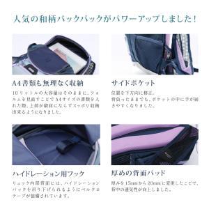 《即納》[あすつく]BIKOT(ビコット)Backpack 10リットル バックパック サイクリング【国内独占】《P》|qbei|02