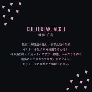 《即納》BIKOT(ビコット) コールドブレークジャケット 冬用サイクルジャージ 氷点下から10度まで対応 撥水・防風機能付き【国内独占】|qbei|03