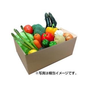 九州野菜よかもん基本10品目セット!(単身・お二人用)【産地直送】【クール便】|qtsuhanshop