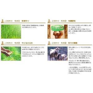 ジャージー牛乳 低温殺菌牛乳 白木牧場の特別牛乳 720ml×3本セット(こだわりの牛乳)|qtsuhanshop|06