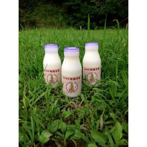ジャージー牛乳 低温殺菌牛乳 白木牧場の特別牛乳 200ml×12本セット(こだわりの牛乳)|qtsuhanshop