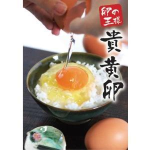 【九州産特選地卵】貴黄卵20個セット(Mサイズ)【卵の王様・貴黄卵】|qtsuhanshop